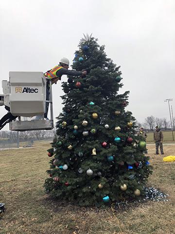Repaired Tree